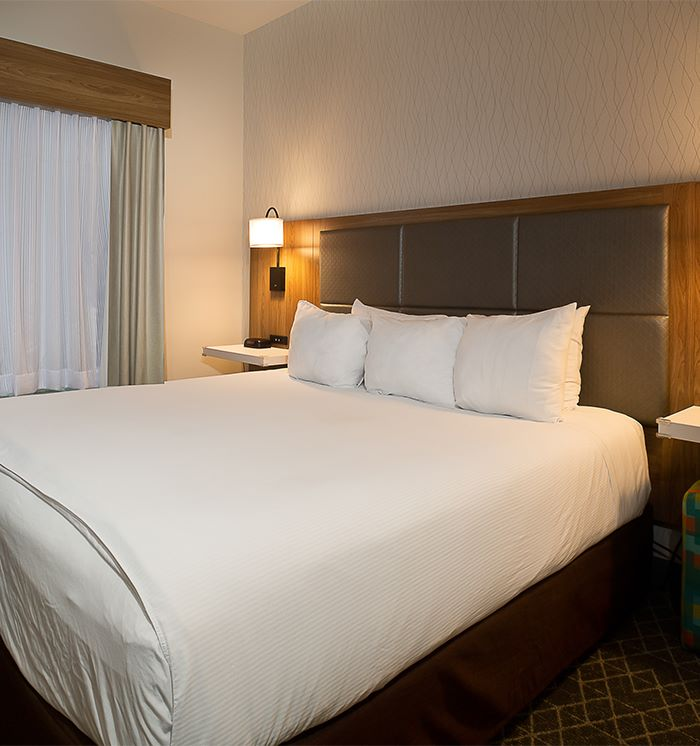 Hawthorn Suites By Wyndham-Oakland/Alameda 1 King Bed Accessible Suite